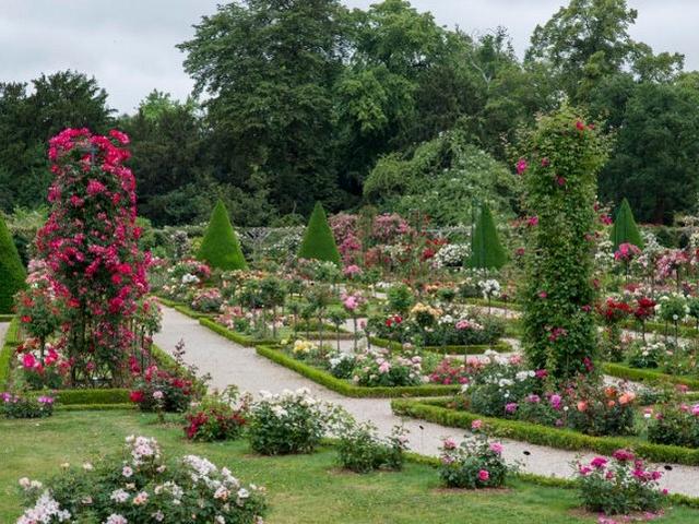 jardin botanique de paris les familles pariseinnes