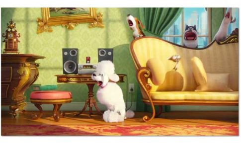 Film animation comme des betes